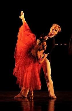 Baletžravá Camellia