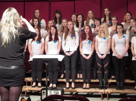 Hudební festival pedagogických škol Karlovy Vary 2015