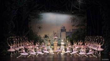 Balet SND: Korzár – míchaný nápoj se suchým ledem