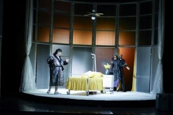 Don Pasquale aneb Doktor Malatesta v Liberci