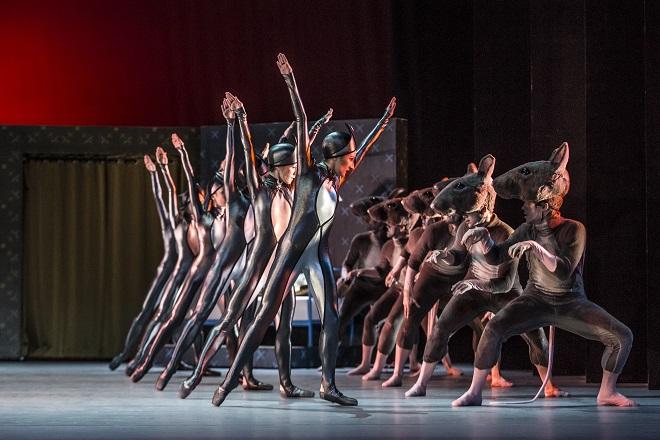 P. I. Čajkovskij: Louskáček a Myšák Plyšák - soubor Baletu ND - ND Praha 2015 (foto Martin Divíšek)