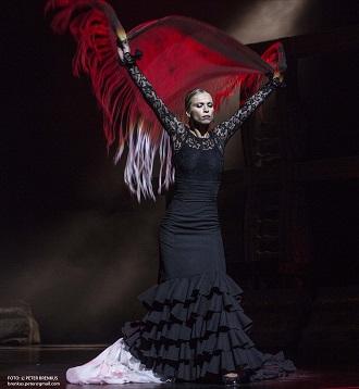 Bizet/Šarközi: Carmen à la Gypsy Devils - Flamenco (Zuzana Čorejová) - SND 2015 (foto Peter Brenkus)