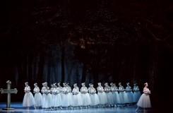 Adolphe Charles Adam: Giselle - soubor Baletu ND - ND Praha (foto Martin Divíšek)