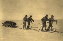 Glosa: Srnka není první, kdo v opeře dobývá jižní pól