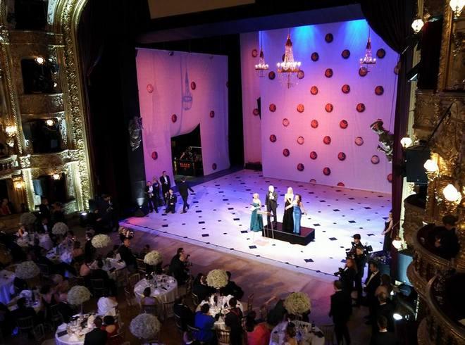Ples v Opeře 2016 (foto FB)