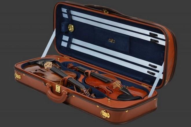 dvojité pouzdro na housle (foto archiv)