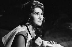Po tři desetiletí byla jednou z hlavních tváří českobudějovické opery