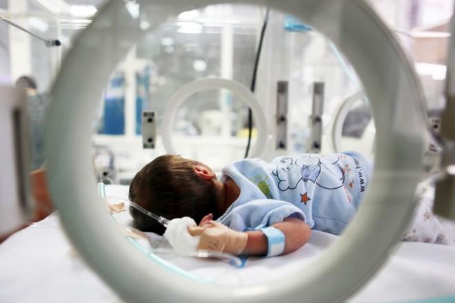 Inkubátor - ilustrační foto (foto archiv)