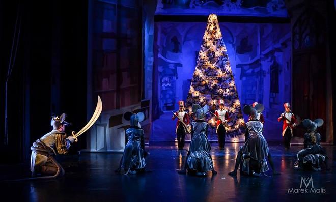 Petr Iljič Čajkovskij: Louskáček, vánoční sen - First International Ballet School - Divadlo Hybernia Praha 2016 (foto Martin Malis)