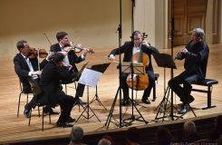 Bennewitzovo kvarteto v Rudolfinu a vzkaz publiku k tomu