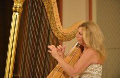 Harfa na hranicích